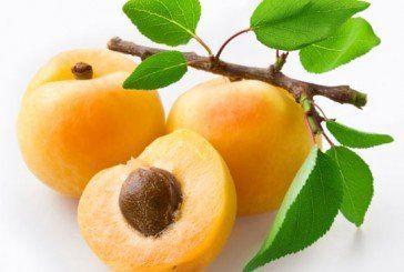 Чим корисний абрикос?