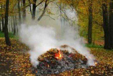 Тернополян «муніципали» штрафуватимуть за спалення сухого листя