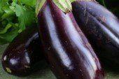 Щоб вродили баклажани: типові помилки городників і поради для вирощування цих овочів