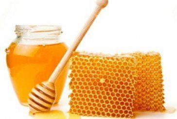 Перемагаємо хвороби медом