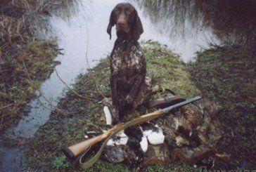 Собака підстрелив американського мисливця