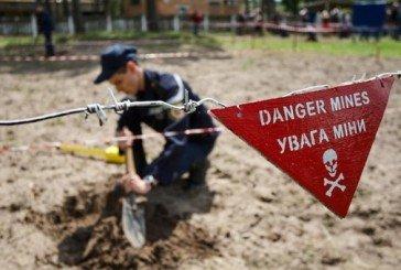 На Тернопільщині цього року натрапили на 937 вибухонебезпечних предметів часів минулих воєн