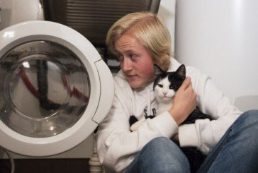 У Норвегії кота 40 хвилин прали в машинці
