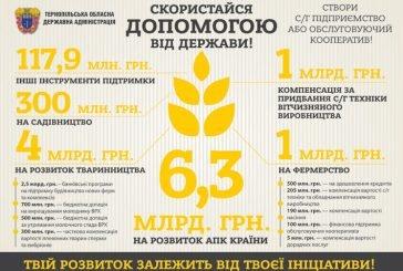 Мешканців Тернопільщини закликають створювати обслуговуючі кооперативи! (ІНФОГРАФІКА)
