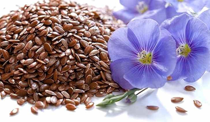 Насіння льону: очистить організм і полікує серце