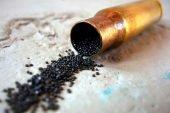 У мешканця Бережанщини поліцейські вилучили 158 набоїв
