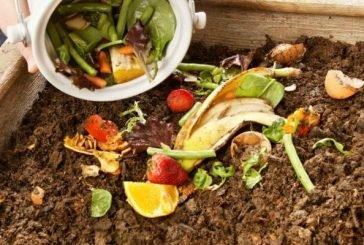 Третина продуктів, вироблених на планеті, йде в смітник