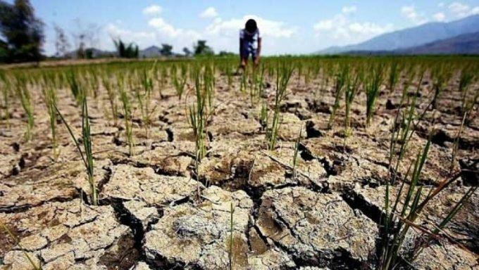 Окупований Крим охопила тотальна засуха