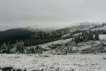 У Карпатах випав рясний сніг (ФОТО)