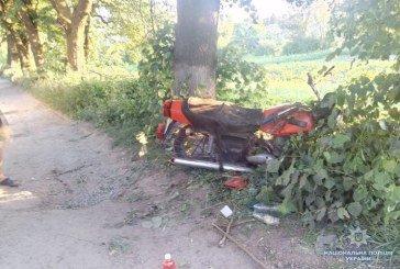 На Тернопільщині водій на мотоциклі загинув врізавшись у дерево, ще дві ДТП закінчились травмами різного ступеня (ФОТО)
