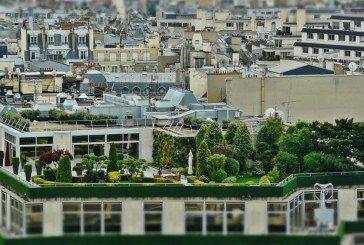 У Нідерландах масово створюють парки на дахах