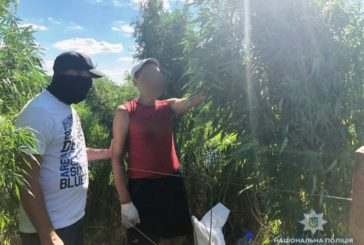 На Київщині поліція полює на наркобізнесменів за допомогою дронів (ФОТО, ВІДЕО)