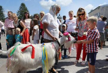 Колоритний фестиваль «Коза-Фест» вже втретє проводять у містечку на Тернопільщині (ФОТОРЕПОРТАЖ)