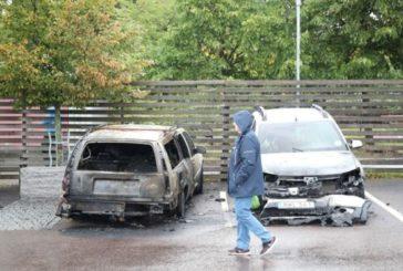 У Швеції лютують підліткові банди паліїв авто