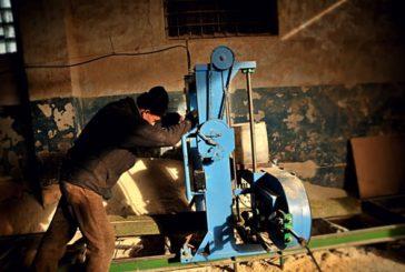 На Теребовлянщині з недіючої пилорами злодій виніс майже все майно
