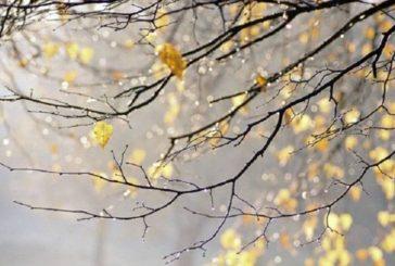 Вівторок на Тернопільщині – холодний, вологий, вітряний