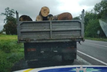 На Тернопільщині затримали дві вантажівки з колодами без відповідних документів (ФОТО)