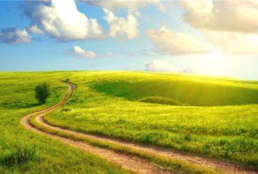 Українські ґрунти втрачають родючість