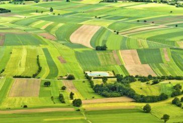 Що жителі Тернопільщини мають знати при укладенні договору про оренду земельної ділянки?