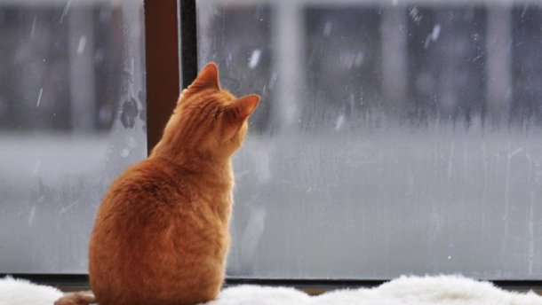В Україну йде потепління, на Заході – сніг з дощем