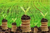 Що треба знати про земельний податок та орендну плату за земельні ділянки державної і комунальної власності?