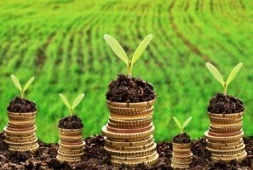 Чи потрібно щороку повідомляти контролерів про пільгу зі сплати земельного податку?