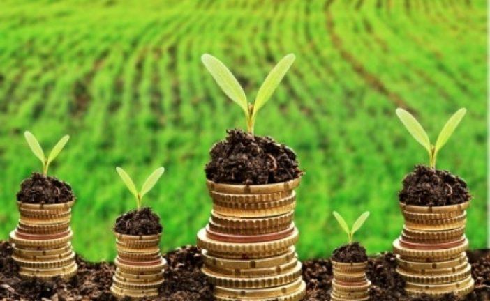 Хто має право на пільги зі сплати земельного податку