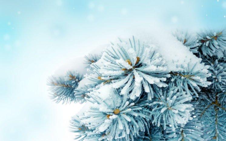 П'ятниця на Тернопільщині буде дуже холодною