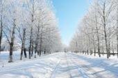 Одягайтеся тепліше: субота на Тернопільщині буде холодною