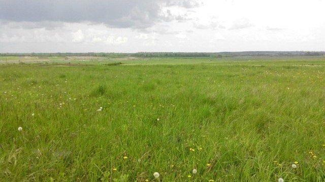 На Теребовлянщині агропідприємство незаконно використовувало понад 30 га землі