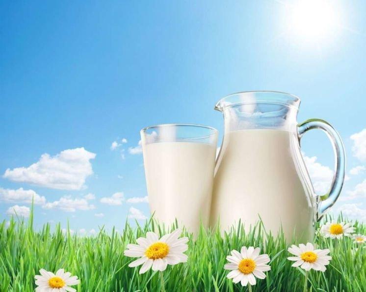 Чому у селян на Тернопільщині дешево закуповують молоко?