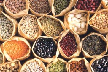 Перевіряємо насіння!
