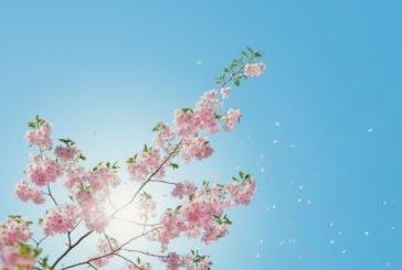 Коли в Україну прийде справжня весна?