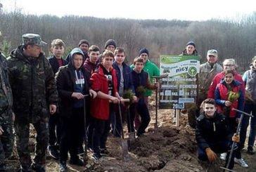 Озерянські школярі створили на Чортківщині два гектари соснового лісу (ФОТО)