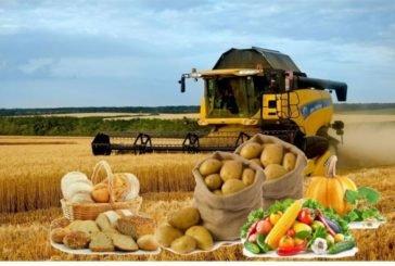Агропідприємства Тернопільщини торік добре заробили