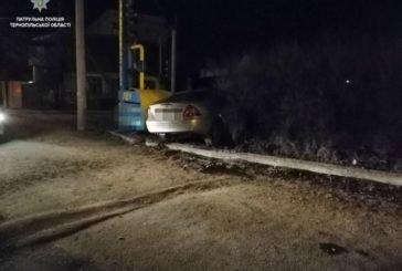 У Тернополі п'яний водій «припаркувався» на своєму «мерсі» в кущах (ФОТО)