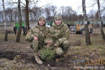 У Максимівці на Тернопільщині висадили сто дерев в пам'ять про загиблих Героїв (ФОТОРЕПОРТАЖ)