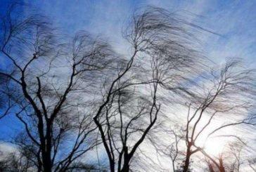 Штормове попередження: у Тернополі та області – сильний вітер і ожеледиця