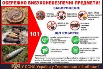На Тернопільщині цьогоріч виявили 98 боєприпасів часів минулих війн