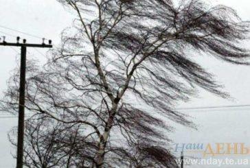 Тернопільщину й далі «штормитиме»: буде вітряно, а на дорогах – ожеледиця