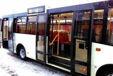 Тернопіль хоче купити 100 європейських вживаних автобусів за 160 млн грн