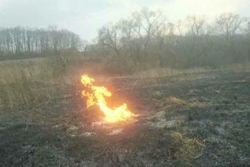 Полум'я виходило з-під землі: поблизу Тернополя через спалювання сухої трави ледь не сталася трагедія (ФОТО)
