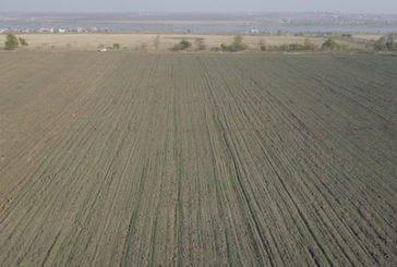 На Тернопільщині прокуратура вимагає повернути державі 83 гектари землі, вартістю понад 2 млн грн