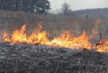 На Тернопільщині суха трава горить гектарами