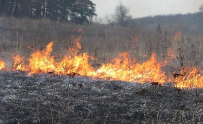 На Кременеччині через спалювання сухої трави могла згоріти будівля
