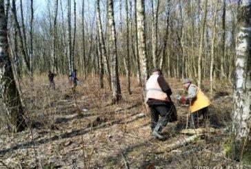У тернопільському парку «Загребелля» виявлено факти незаконного збору березового соку (ФОТО)