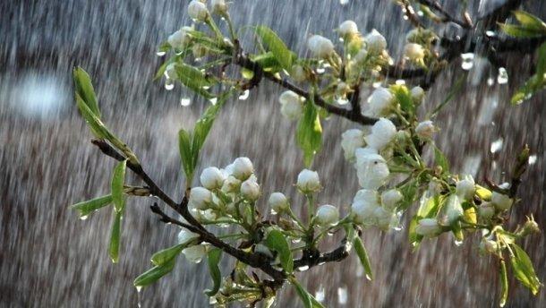 Сьогодні дощ, пориви вітру та холоднеча