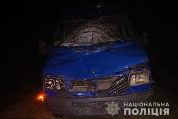 На Тернопільщині водій буса збив чоловіка, який вночі стояв посеред дороги (ФОТО)