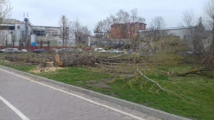 У Тернополі влаштовують пікнік, щоб захистити парк