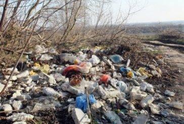 Розпочато кримінальне провадження щодо забруднення земельної ділянки побутовими відходами на Теребовлянщині